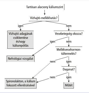a kalcium hipertónia hiánya amit a hipertónia nem szeret