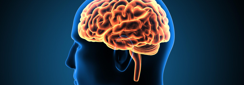 magas vérnyomás és agy