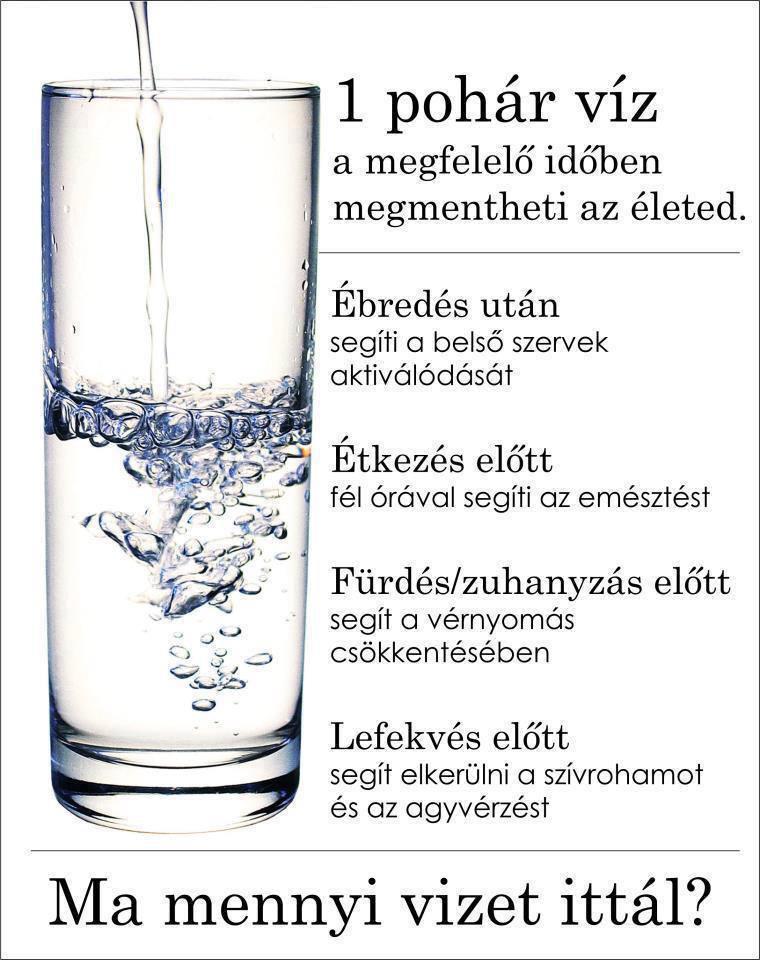 Tiszavasvári Önkormányzat - Lételemünk a víz - Batmanghelidj és magas vérnyomás