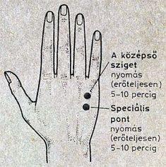 Fül-akupunktúra - hopmester.hu