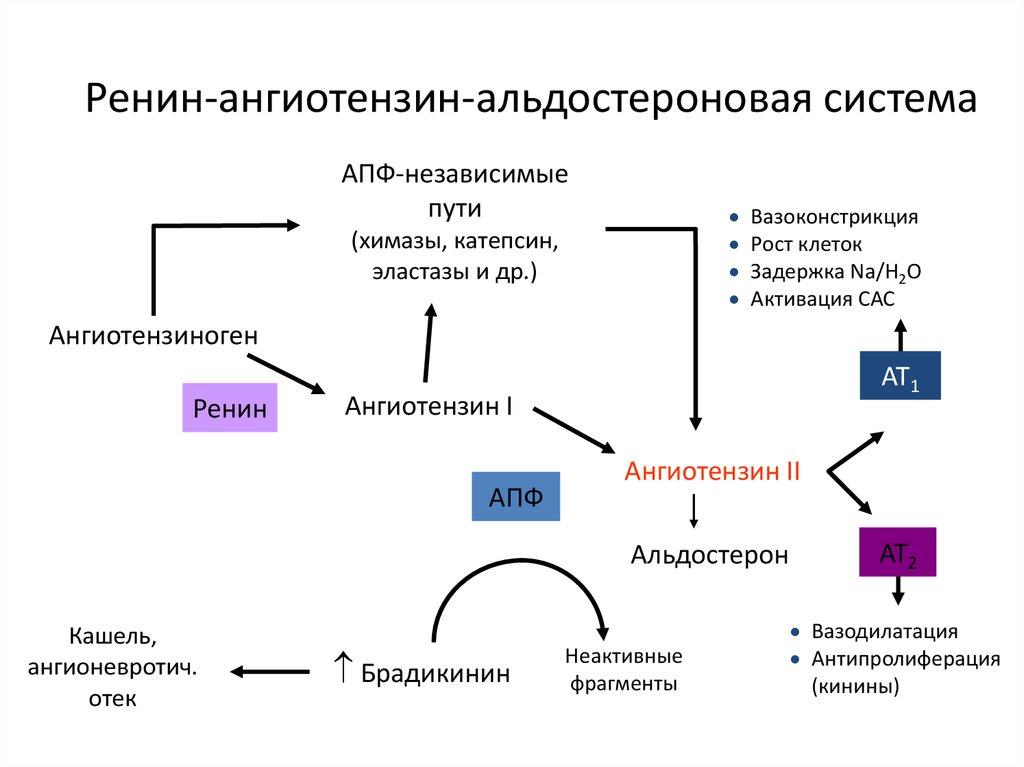 A magas vérnyomás osztályozása fokozatok és fokozatok szerint: táblázat