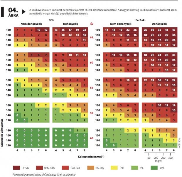 C-reaktív fehérje, ultraszenzitív | Lab Tests Online-HU
