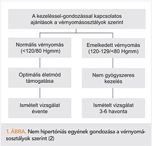 felnőtt hipertónia