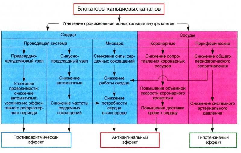 a vérnyomáscsökkentők legújabb generációs listája)