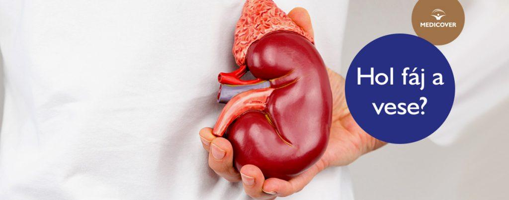 kapcsolat a magas vérnyomás és a vese között