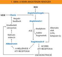 angiotenzin receptor blokkolók magas vérnyomás esetén)