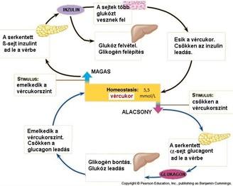 megnövekedett vércukorszint és magas vérnyomás magas vérnyomás pacemakerrel