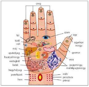 pontok az emberi testen magas vérnyomásban)
