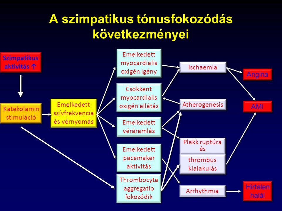szimpatikus rendszer és magas vérnyomás)