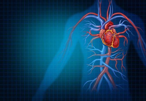 a magas vérnyomás kórházi kezelési standardja novokain hipertónia esetén
