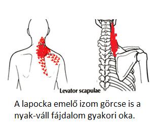 a nyak fáj és magas vérnyomás)