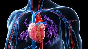 magas vérnyomás kezelése idősek konzultációján