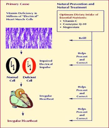 APF-gátlók a magas vérnyomás kezelésében