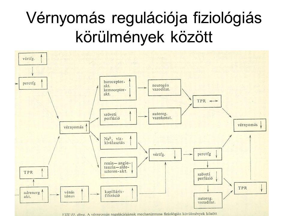 2 fokú magas vérnyomás kezelési terve)