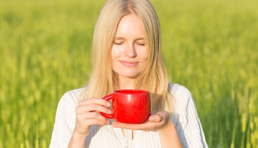 magas vérnyomás esetén lehet csipkebogyót inni)
