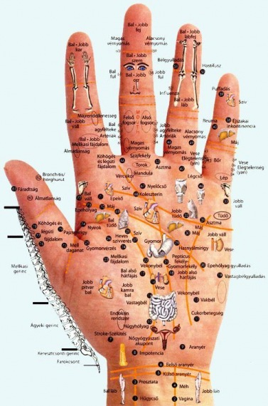 magas vérnyomás bal és jobb kéz