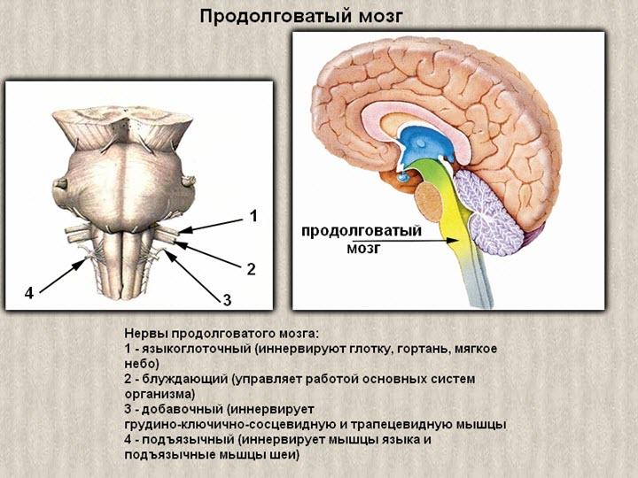 Osteochondrosis és nyomás