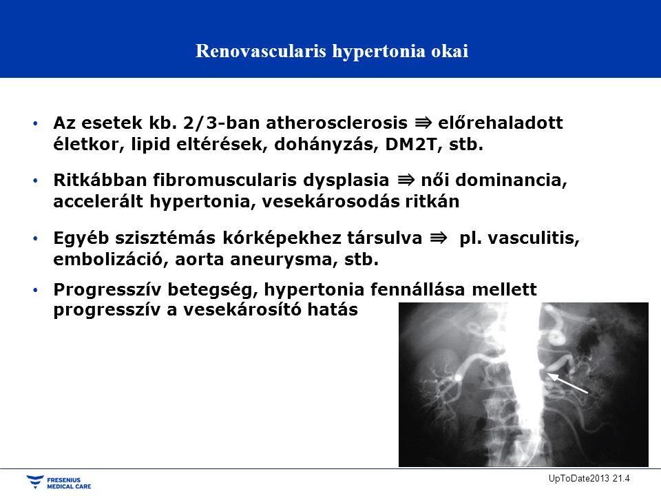 a renovascularis hipertónia kezelése hogyan hígíthatja a vért magas vérnyomással