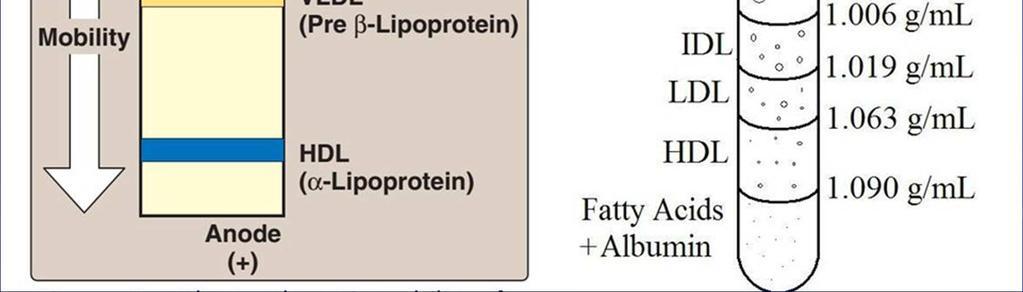 elektroforézis hipertónia