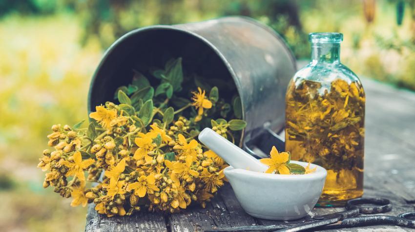 növényi gyógyszer a magas vérnyomás ellen)