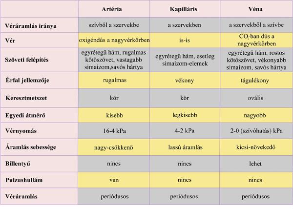 kapilaris és magas vérnyomás)