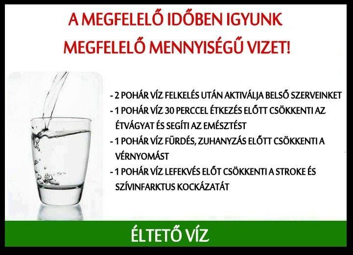 Orvos ajánlásai, hogy mennyi vizet kell inni a magas vérnyomás esetén - Megelőzés
