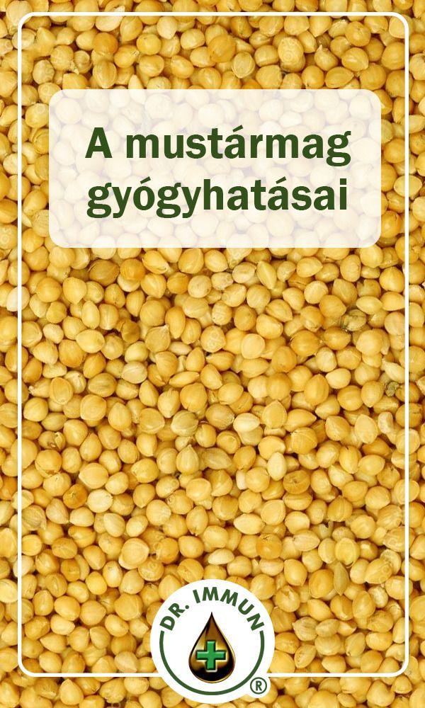 6 ok, amiért érdemes mustármagot fogyasztani | Well&fit