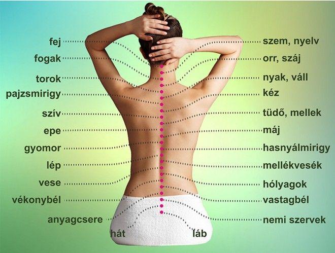 magas vérnyomás és a gerinc