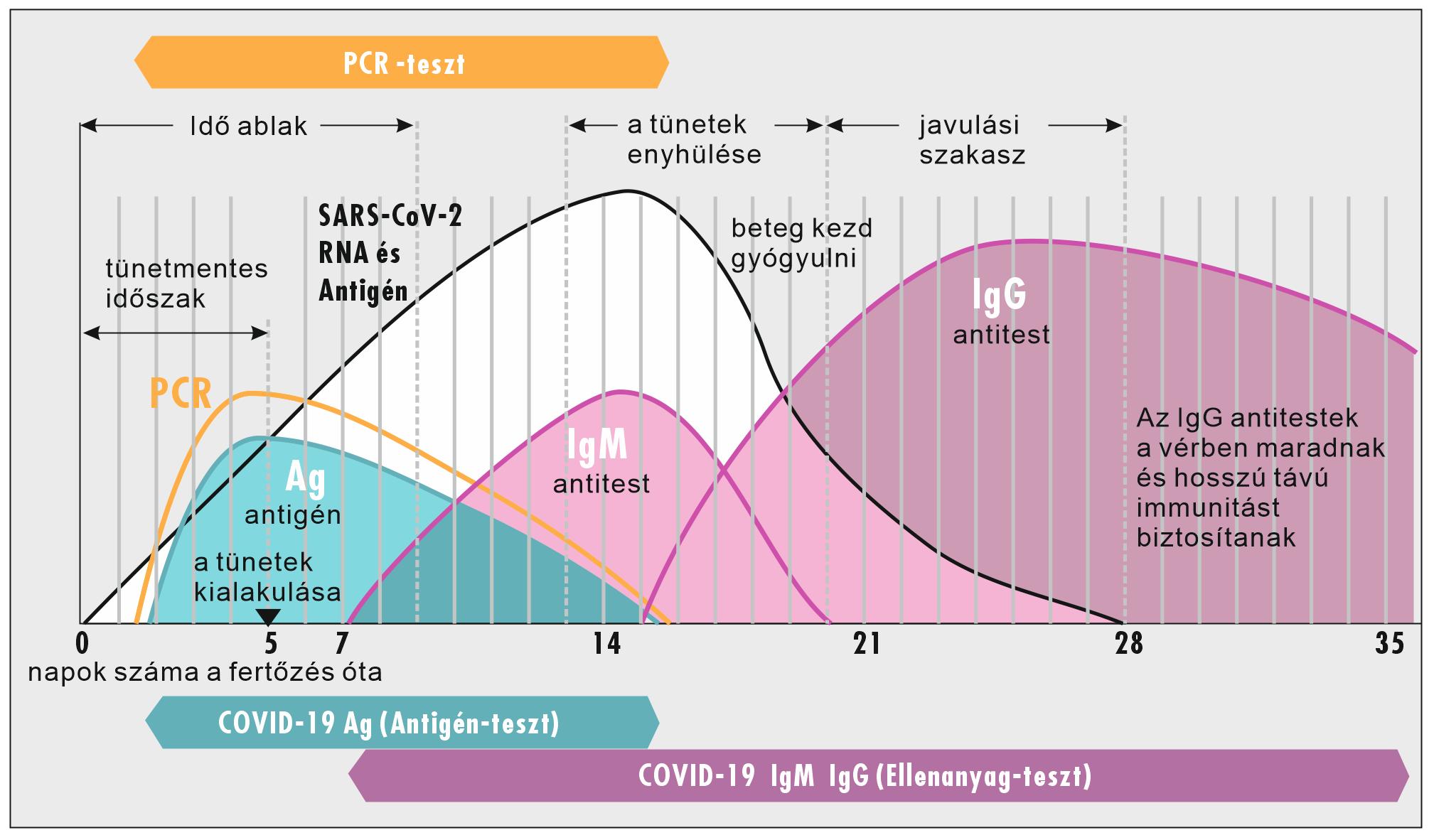 magas vérnyomás teszt eredményei)