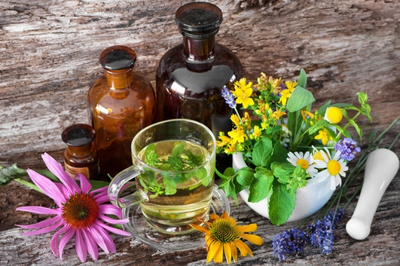 A legjobb növények magas vérnyomásra - HáziPatika